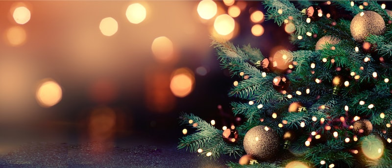 Close up image of a Christmas tree decorated with ornaments.